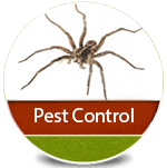 pest control services by Turfco in Idaho icon