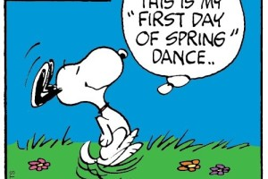 Snoopy dancing because of the first day of Spring Dance