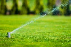 Garden Lawn Sprinkler. Automatic Garden Watering System.