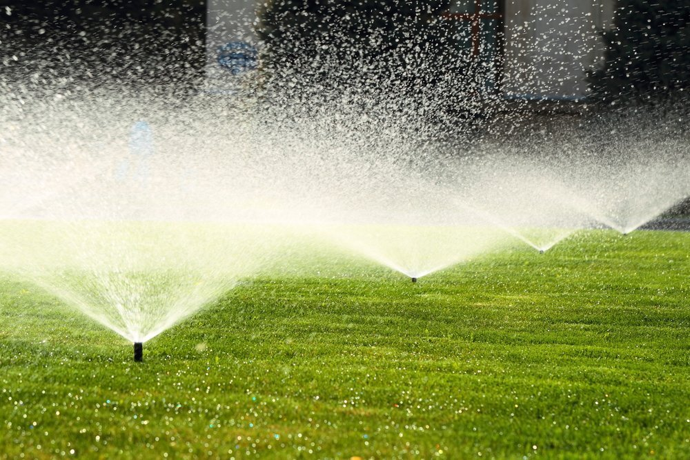Which Type of Sprinkler Should I Use on My Lawn?