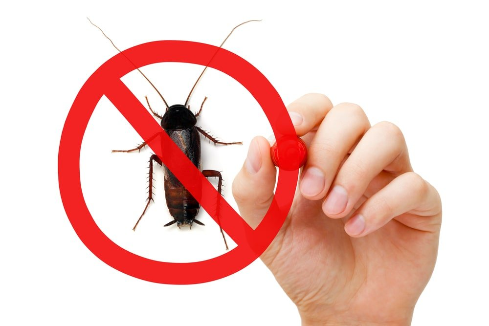 How To Keep Pests Out Of Your Yard